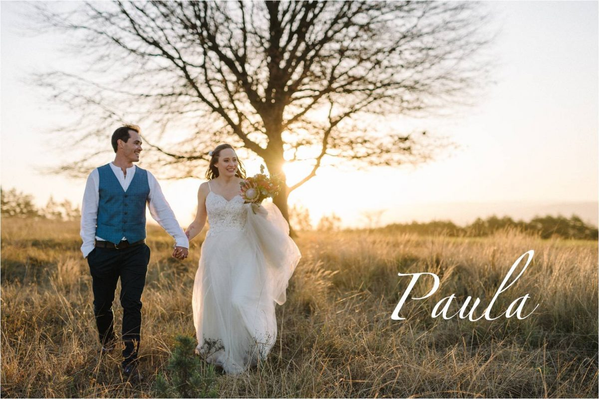 Romantic tulle wedding dress with mocha bodice, V-neck bodice & lace applique wedding dress